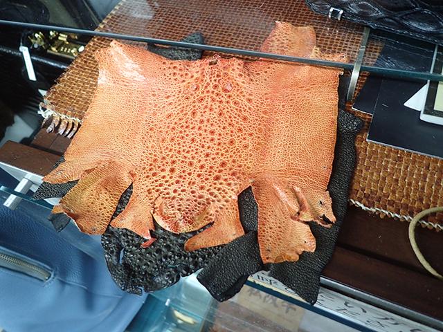 これはカエル革。両生類でも革ってとれるのか。柔らかくて高級感ある。