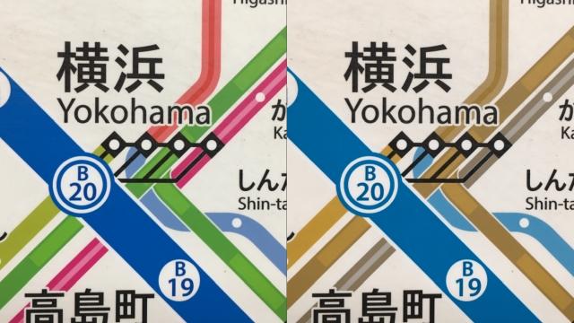 左:一般型色覚、右:2型2色覚(iPhoneアプリ「色のシミュレータ」より)