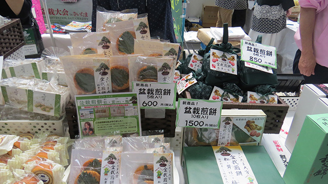 食べられる盆栽こと盆栽煎餅。