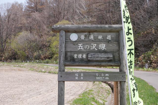 普通林道「五の沢線」。最初に通ったときは、家族4人ともなぜかこの道を見つけられなかったので迷ってしまった