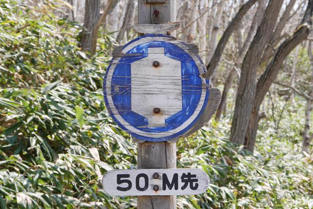 これなんて、木にペンキを塗って作った交通標識なのだ。今まで見たこともなかった逸品が、まさか油田に向かう途中で見られるとは