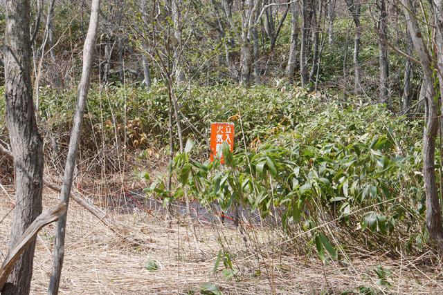 石油臭の強いあたりを散策していると、道路脇に「火気厳禁」と書かれた看板が見えた。ここだ!
