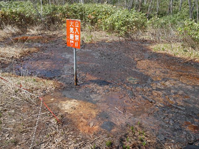 この地面にしみ出している黒いのが石油である(念のため、あとで地元の図書館に行って調べた)
