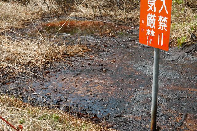 あこがれの石油(原油)が、こんな間近で見られるとは。この歳になると「生まれて初めて見る」という体験が日常ではほとんどないため、自然に湧く石油が見られたのは割と感動的だった
