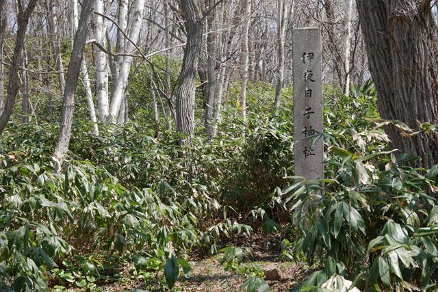 社殿などはすでに跡形もなく、石碑だけがそこに神社があったことを示す手がかりとなっている