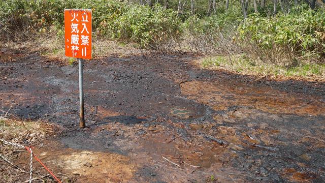 この地面にしみ出しているのが、何を隠そう石油(原油)である