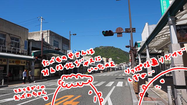 鳥取駅から県庁まではとても立派な商店街が続く。閑散としているのは、北ジャス(イオンモール鳥取北。旧・ジャスコ鳥取北店)に店が集中しちゃったかららしい。