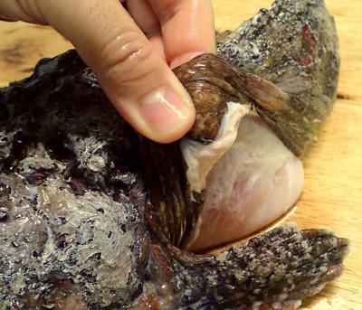 皮に切り込みを入れ、そこをきっかけにして剥いていく。皮には鱗らしい鱗が無い。