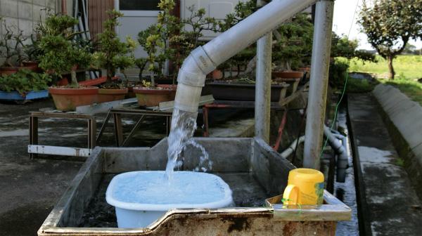 家の庭にはくみ上げた水があふれ出ている。