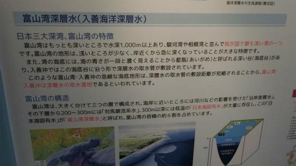 富山湾の構造も知ることができる。
