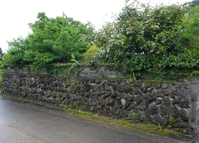なんか守備力が高そうな塀の中央にもある。トーチカだろうか。