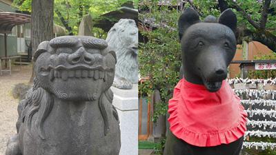 ライオン像のほかにもここの狛犬と狐もなかなかいい顔してる