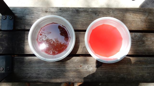 右のきれいな色の血が洗うやつで、左の濁った色の血が洗われるやつ。