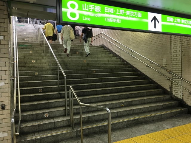 ひたすら「電車を降りる→ホームから階段で移動→トイレを調査→再び階段で移動→電車に乗る」の繰り返し。エスカレーターが無いのもざら。世の中に広まれバリアフリー。