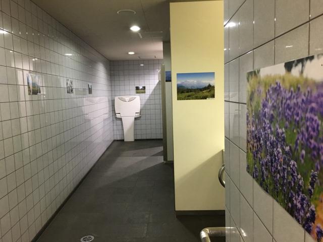 都営大江戸線 国立競技場駅のトイレ。風景写真がいっぱい!