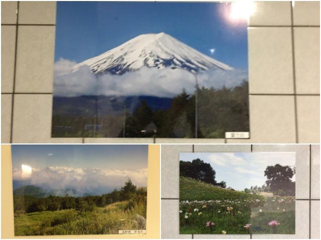 富士山や松本市など、特に東京の景色というわけじゃない。どこで撮ったものか書いていない写真もある