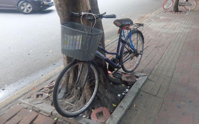 さりげない自転車にも変な日本語がっ!
