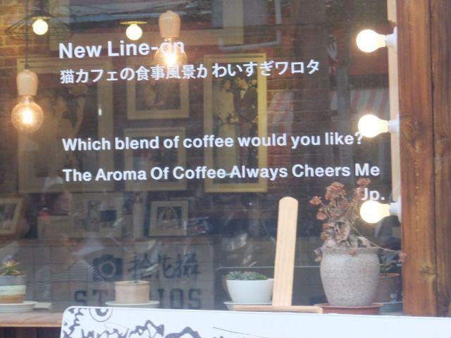 『猫カフェの食事風景かわいすぎワロタ』