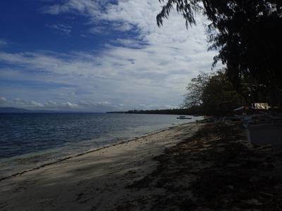ボホール島のとあるビーチ。ここに暮らす漁師たちは主にオウムガイ漁で生計を立てている。