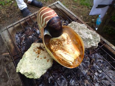 日本式の料理をもう一品。オウムガイのつぼ焼き!!火が通るほどに香ばしい匂いが辺りに漂う。