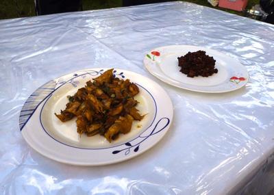 漁師さんたちが現地流の料理も作ってくれた。ボホールの人たちはもてなし好きらしい。
