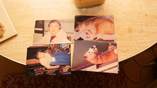 前の店の写真を探していただいたが、犬とおばさんの写真が出てきた