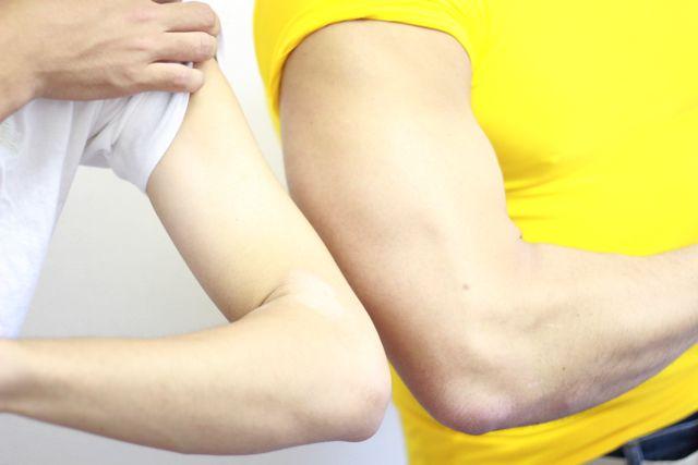 僕の腕と比べたのだけれど、3倍くらい太さが違った。自分の腕が鶏ガラに見えてくる。かわいそう。