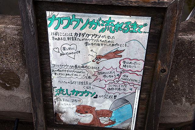 夏っぽいイメージだが1年中やってる。市川市動植物園は入場料大人430円と激安。
