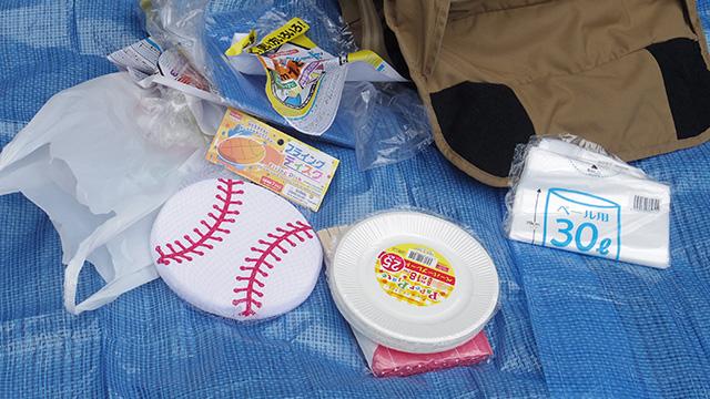 野球ボール型のフリスビーも用意されていた