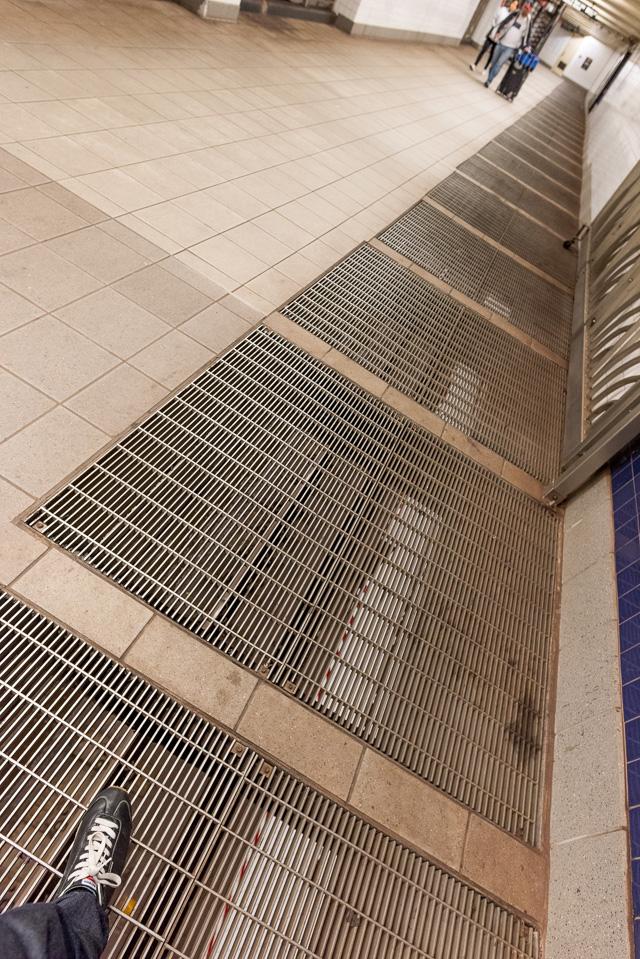 改札階を歩いていると、下を走る車両が見えたりする。