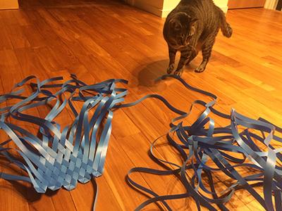 家でこんなことをやっていると猫が邪魔してくるので大変さが増す