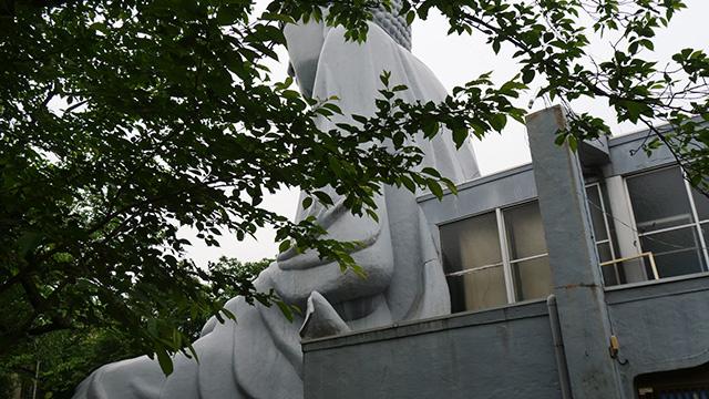 しかしこの大仏、建物とつながっているのである…なんだこれは