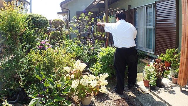 「せっかくの庭だから、あそこで食べましょう。」と突然言い出すユーチューバー江ノ島茂道。