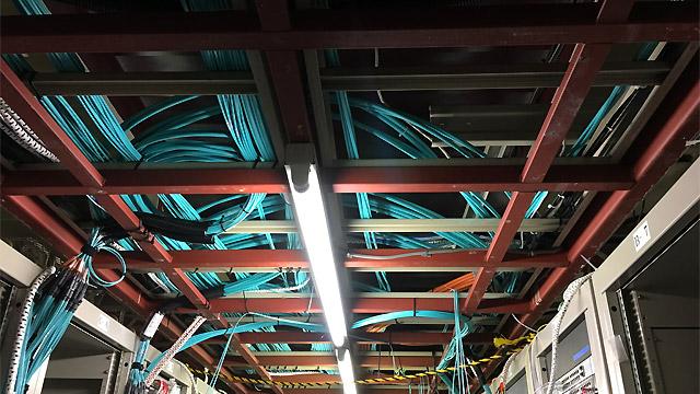 天井にもケーブル。日光にこういうのあった。天井に龍の絵が描いてある部屋。