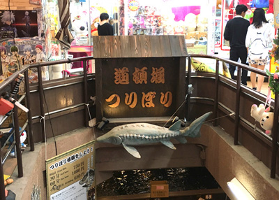 その名も「道頓堀つりぼり」はゲームセンターの地下にある。チョウザメの看板が目印。