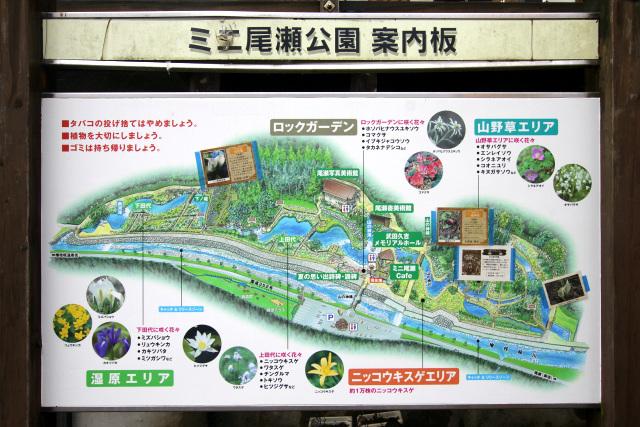 いくつかのエリアに分けられており、それぞれの環境の植物が見られるようだ
