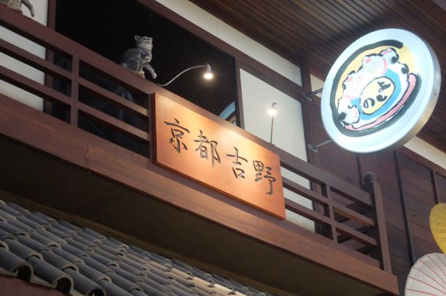 京都吉野。吉野は奈良県だけど南北朝ってことでオッケー。