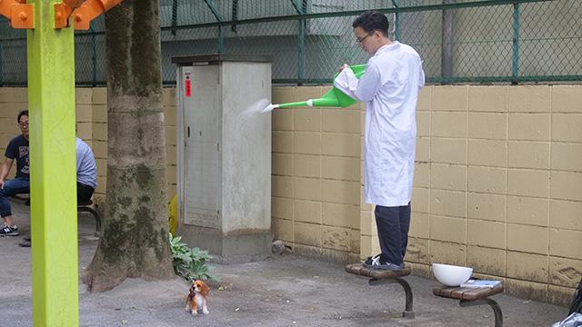 まずは雨に濡れる子犬を再現してみよう
