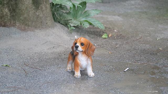雨も子犬も本物ではないが、かよわい感じやかわいそうな感じは伝わる