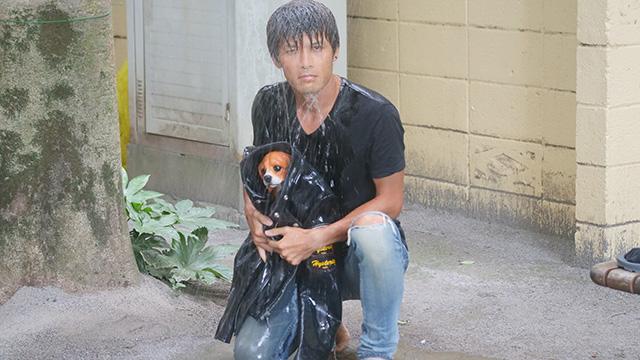 そしてカメラ目線。これらの3枚を通じて私たちは雨に濡れた子犬を革ジャンで抱きかかえるのは本当にかっこいいことを知る