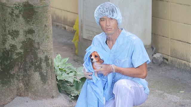 雨の中子犬を温めてえらいなと思うが、医者は本来人助けをする職業でありギャップは生まれない。それどころか「医者よ、手術はどうした」という気持ちがわきあがり、かっこいいがかすんでしまう