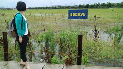 IKEA予定地は大切なことを私に教えてくれた。