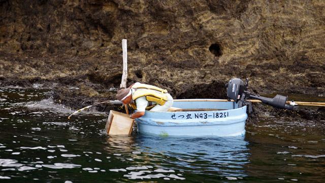 たらい舟、佐渡島で今も現役でした。