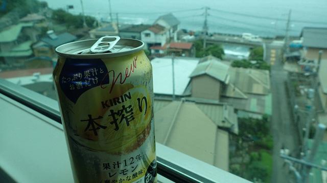 車窓とアルコール飲料は相性が良すぎる。飲まずにいられなくても仕方がない