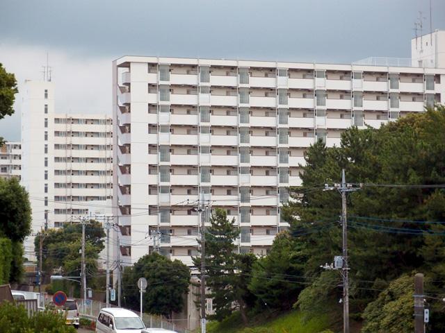 もっぱら高層棟を愛でるタイプの団地マニアであるぼくにとってはパラダイス。