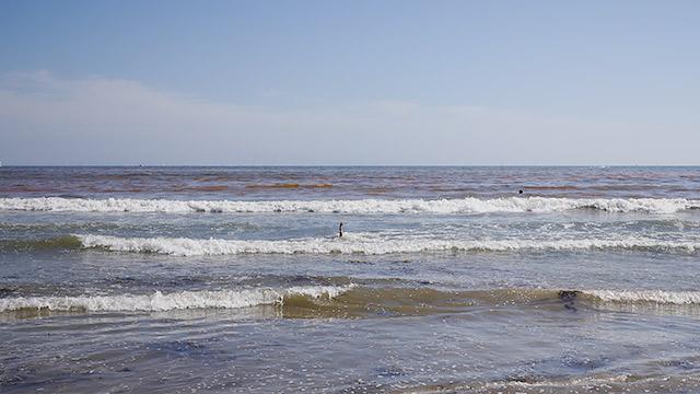 海にも注目しましょう!
