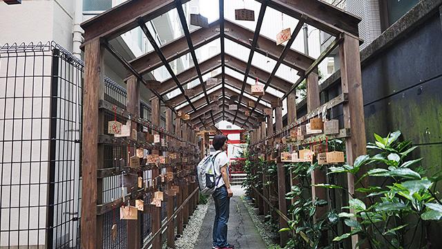 いろは横丁の向かいの通りにある野中神社をお薦めされた。