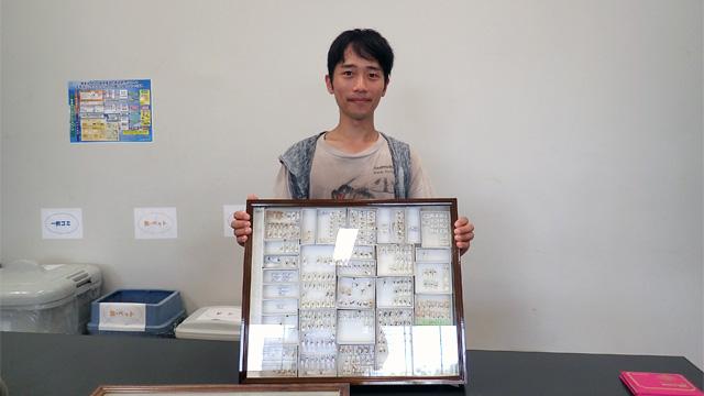 熊澤さん。この博物館には10万点のハエの標本がある。