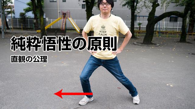 純粋悟性の原則だ。脚を前後左右に一歩ずつ踏み出そう