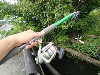 子供の頃に憧れていたリール竿を使って釣りまくってやるぜ。
